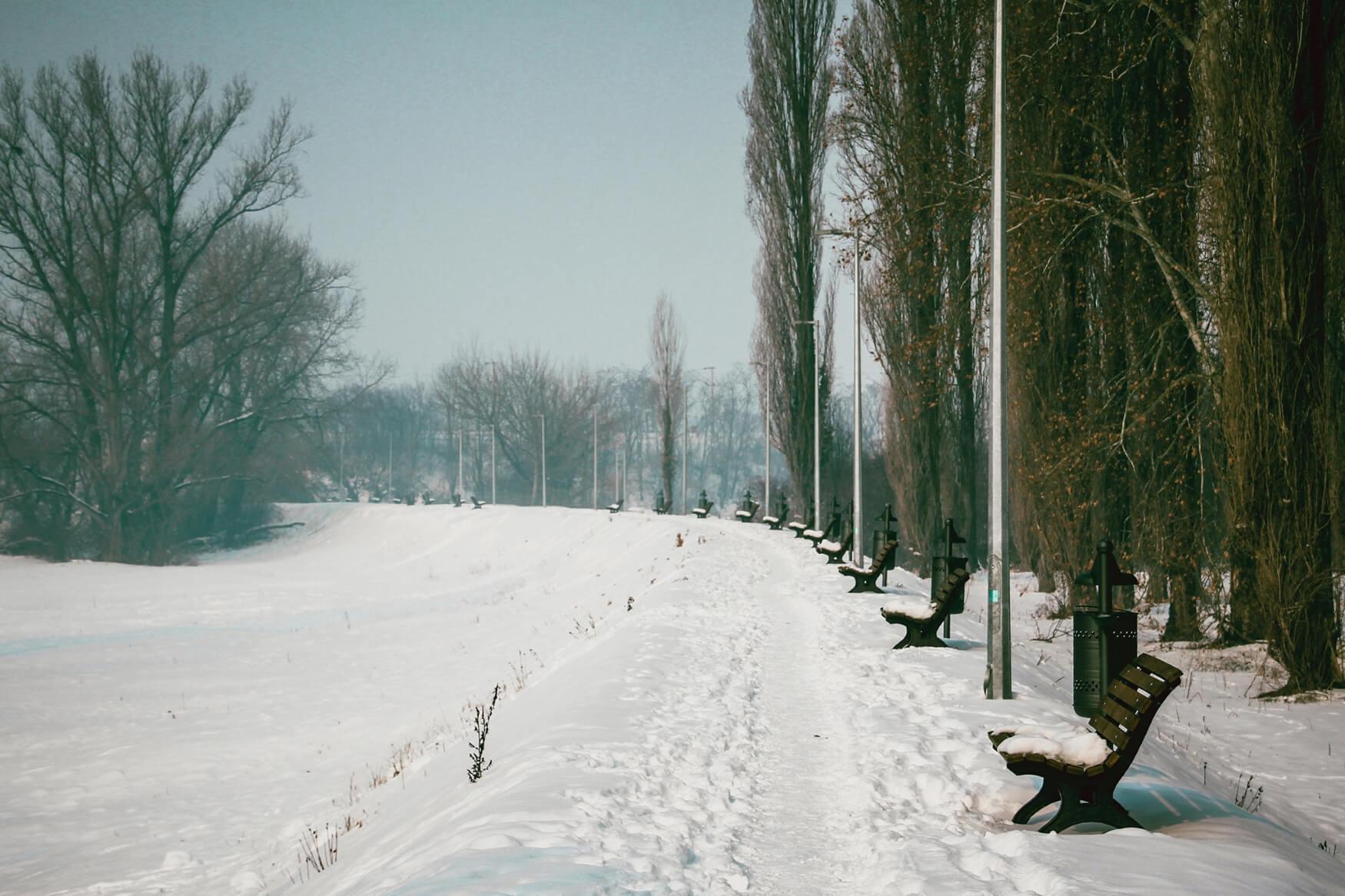 Sisak zima