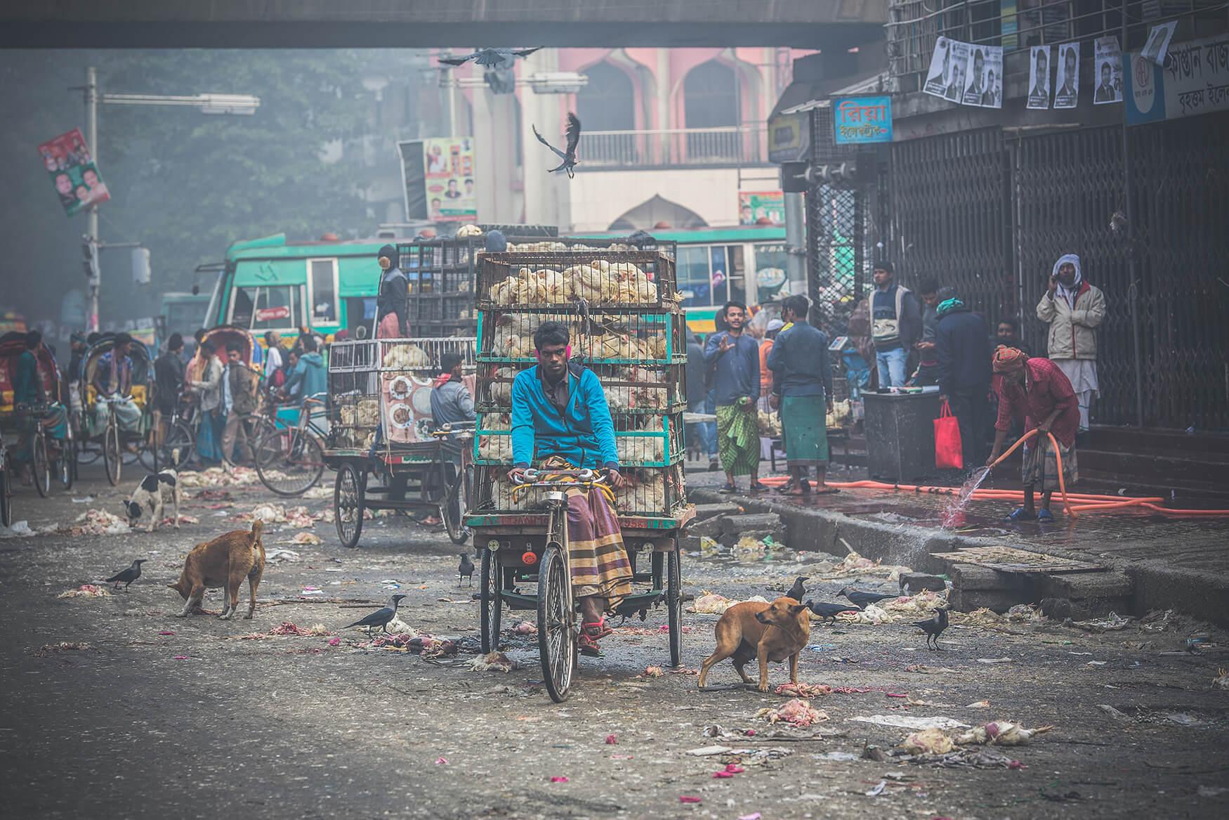 Krešimir_Goleš_streets-of-Bangladesh